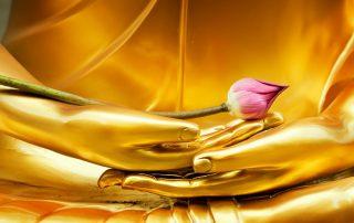 A golden statue of the sacred virgin - Jillian Frazin - Blessings of Jasmine
