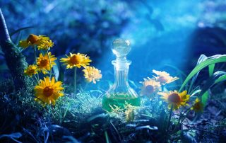A bottle of enchanted liquid in a magical forest - Jillian Frazin - Blessings of Jasmine